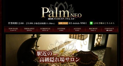 Palm NEO パルムネオ