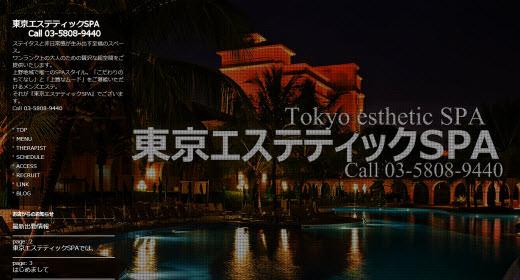 東京エステティックSPA