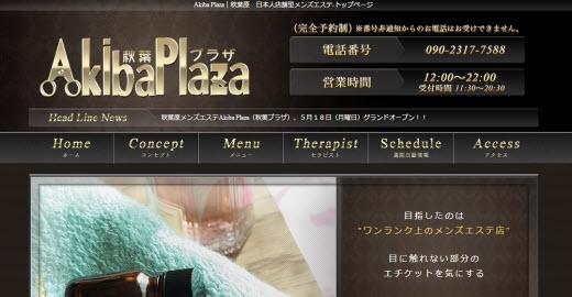 Akiba Plaza 秋葉プラザ