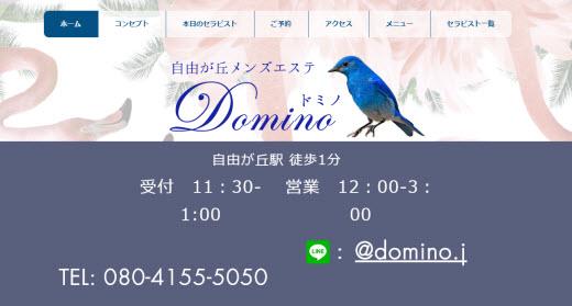 Domino ドミノ