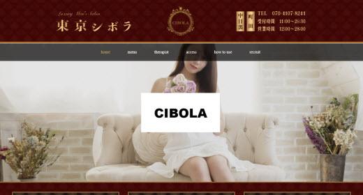 東京シボラ