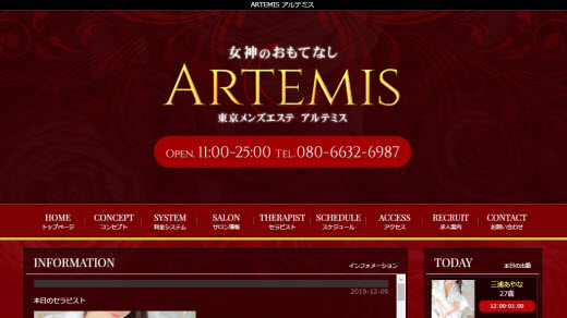 ARTEMIS アルテミス